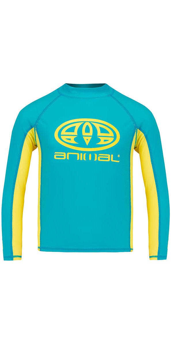 Slim fit GSM: 190 UPF 50+ Polyamide//Elastane Animal Junior Boys Hiltern Short Sleeve Rash Vest Top Black CL9SQ610