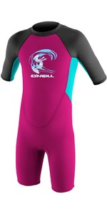 2019 O'neill Criança Reactor 2mm Back Zip Shorty Wetsuit Berry / Aqua / Graphite 4867g
