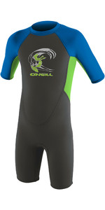 2021 O'Neill Toddler Reactor 2mm Back Zip Shorty Wetsuit 4867 - Graphite / Dayglo / Ocean