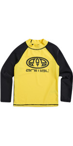 2019 Animal Junior Boys Fontaine manica lunga Rash Vest giallo brillante CL8SN612