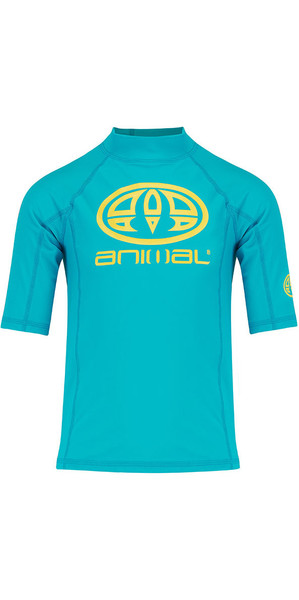 2018 Animal Junior Boys Hiltern Short Sleeve Rash Vest Bluebird Blue CL8SN610
