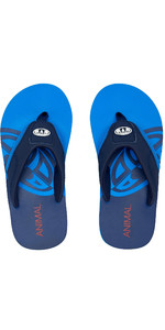2020 Animal Junior Boys Jekyl Slice Flip Flops / Sandalen Fm0ss601 - Indigoblau
