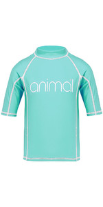 Animal Junior Girls Molli Short Sleeve Rash Vest Pebermynte Blå CL8SN815