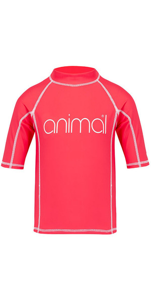 2018 Animal Junior Mädchen Molli Kurzarm Rash Weste Petunia Pink CL8SN815