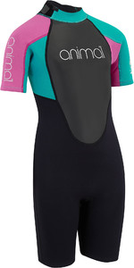 2019 Meninas Júnior Animal Nova 3 / 2mm Flatlock Shorty Wetsuit Preto AW9SQ803