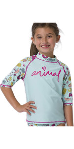 Completo Da Rash Per Bambina 2020 Animal Junior Set Cl0ss814 - Verde Nebbioso