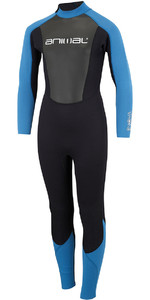 2018 Animal Junior Boys Nova 3/2mm Flatlock Back Zip Wetsuit Marina Blue AW8SN601