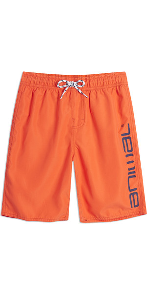 2019 Animal Junior Tanner Planche Short Pétard Orange CL9SQ600