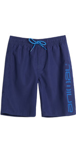 2019 Animal Junior Tanner Boardshorts Marineblau CL9SQ600