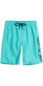 2019 Animal Junior Tanner Boardshorts Pacific Blue CL9SQ600