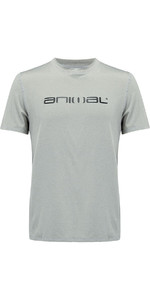 Animal Latero Manga Corta Protection Uv Camiseta Gris Marl Cl8sn022