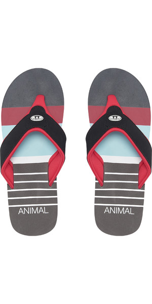2019 Animal Jekyl Swim Mens Flip Flops Red FM9SQ010