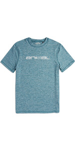 2019 Animal Mens Latero manica corta protezione UV Tee Blue Marl CL9SQ019