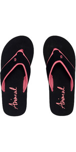 2020 Animal Womens Swish Block Flip Flops / Sandals FM0SS301 - Black