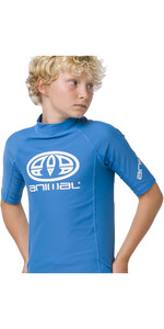 2020 Animal Junior Boy's Hiltern Mangas Curtas Colete Cl0ss610 - Azul